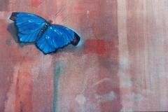 detalhe-borboleta